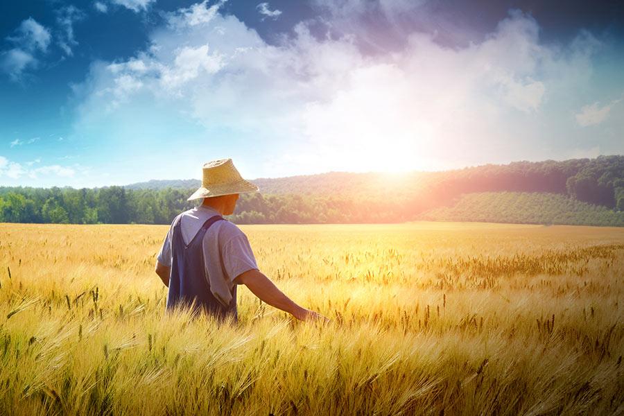 Αγρότης - AgroticMall.gr