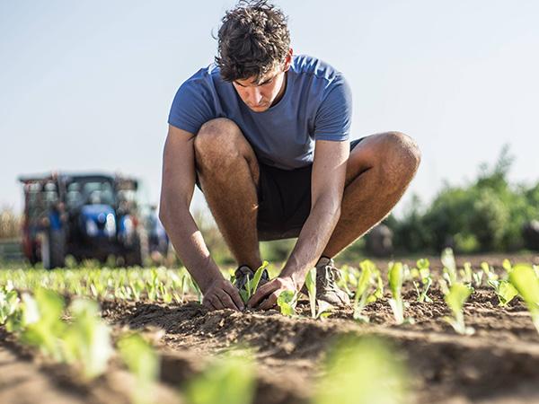 Αγρότης & Εμπόριο - Agroticmall.gr